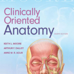 Moore clinically oriented anatomy pdf