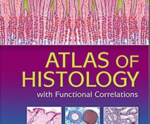 Di fiore atlas of histology pdf