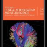 clinical neuroanatomy and neuroscience pdf