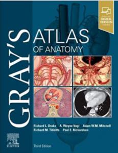 Gray's atlas of anatomy pdf