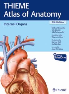 Thieme atlas of anatomy neck and internal organs 3rd edition pdf