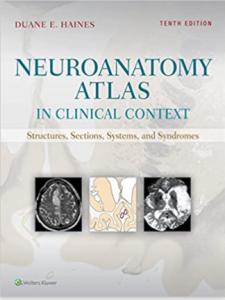 Neuroanatomy Atlas in Clinical Context 10th Edition PDF