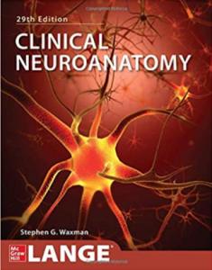 Clinical Neuroanatomy 29th Edition PDF Free