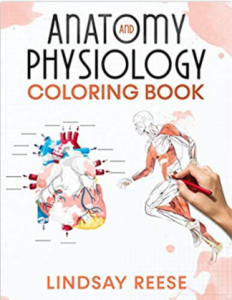 Anatomy and Physiology coloring Book PDF free