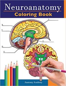 Neuroanatomy Coloring Book PDF free