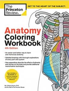 Anatomy Coloring Workbook 4th Edition PDF free
