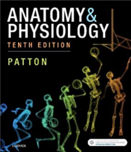 Patton Anatomy & Physiology 10th Edition PDF free