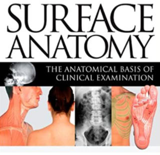 Surface Anatomy The Anatomical Basis of Clinical Examination 4th Edition PDF Free